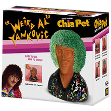 Load image into Gallery viewer, Weird Al Yankovic Chia Pet
