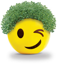 Load image into Gallery viewer, Chia Pet Emoji - Winky