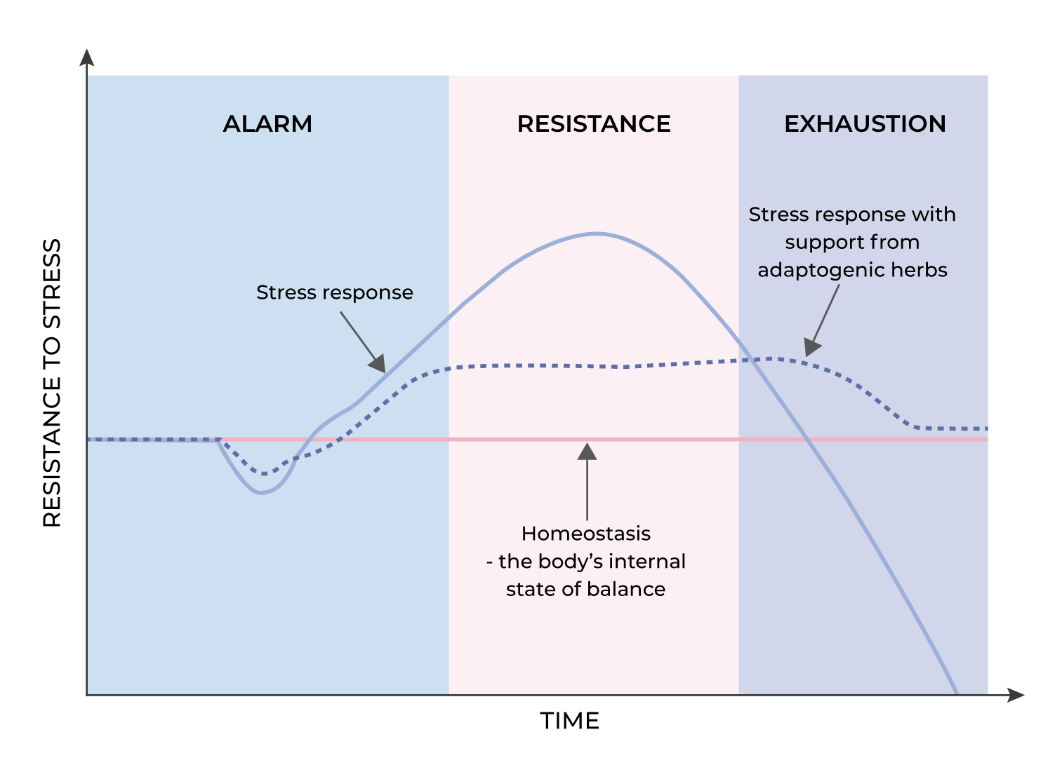 stress response with adaptogens