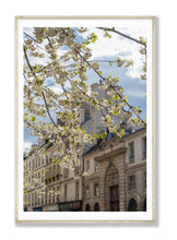 Load image into Gallery viewer, Afternoon Light on the Left Bank - Paris Print - La Porte Bonheur