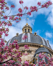 Load image into Gallery viewer, Institut de France Cherry Blossoms - Paris Print - La Porte Bonheur