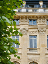 Load image into Gallery viewer, Jardin du Palais Royal in the Summer - Paris Print - La Porte Bonheur