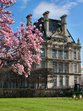 Load image into Gallery viewer, Louvre Magnolias - Paris Print - La Porte Bonheur
