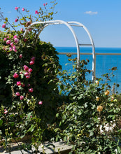 Load image into Gallery viewer, Musée Christian Dior Roses - Normandy Print - La Porte Bonheur