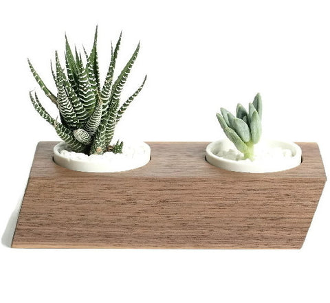 Wood Planter - Walnut Double Triple | Modern Home Decor Ideas - 1PROY Driftwood & Healing Stones