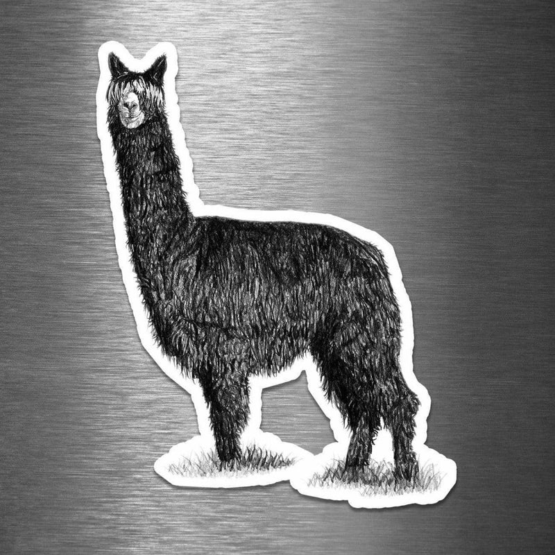 Alpaca (Drawing) - Vinyl Sticker - Dan Pearce Sticker Shop