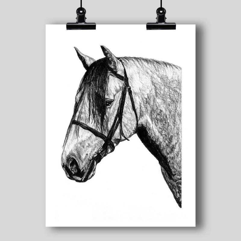 Andalusian Horse Fine Art Print - Dan Pearce Sticker Shop