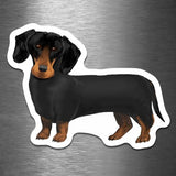 Dachshund Dog - Vinyl Sticker - Dan Pearce Sticker Shop
