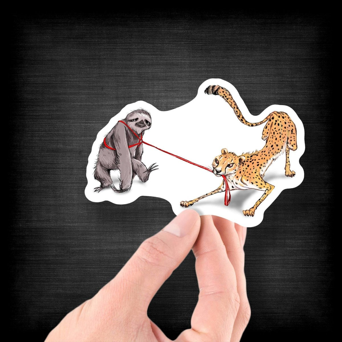 The Cheetah and the Sloth - Vinyl Sticker - Dan Pearce Sticker Shop