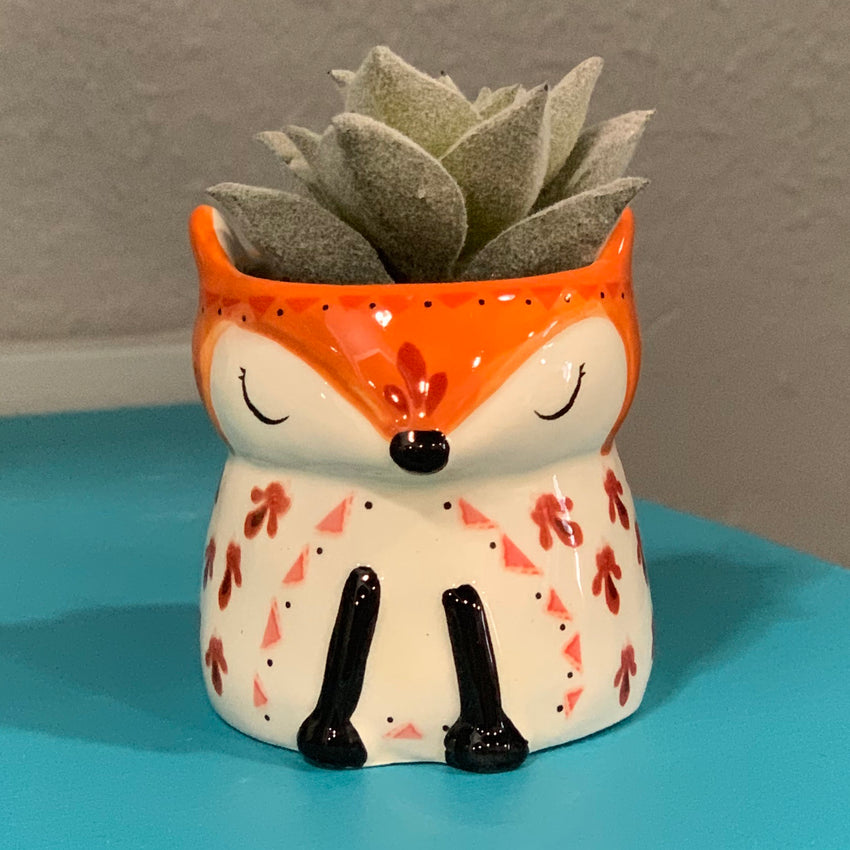 Little Critter Faux Succulents