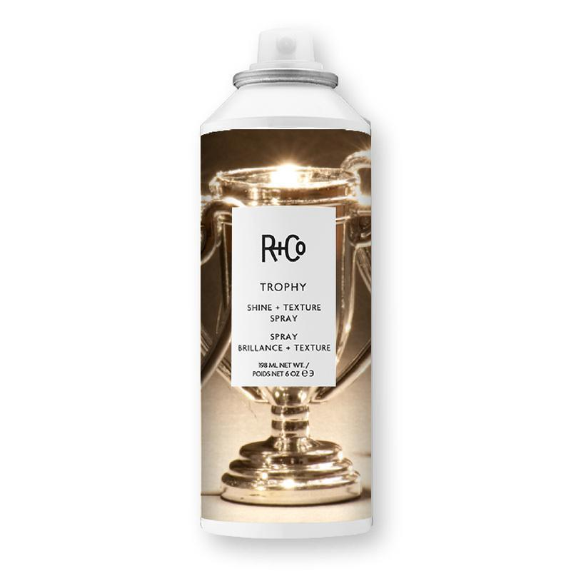 Load image into Gallery viewer, Trophy Shine & Texture Spray-R+Co-Sable Boutique