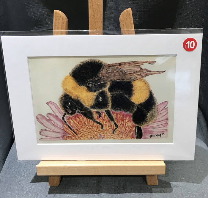 Bumblebee A4 mounted print