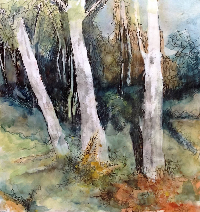 SUNLIT SILVER BIRCHES - CARD
