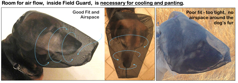 Room for airflow is necessary for cooling and panting.
