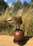 Wren On A Bronze Apple