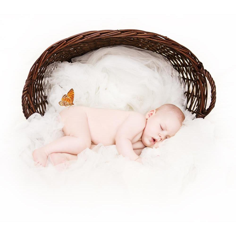 ArtzFolio Newborn Baby Sleeping Inside a Basket Peel & Stick Vinyl Wall Sticker-Laminated Wall Stickers-AZ5005754ART_UN_RF_R-0-Image Code 5005754 Vishnu Image Folio Pvt Ltd, IC 5005754, ArtzFolio, Laminated Wall Stickers, Kids, Photography, newborn, baby, sleeping, inside, a, basket, peel, stick, vinyl, wall, sticker, for, bedroom, large, size, decal, drawing, room, living, decorative, big, waterproof, home, office, reception, pitaara, box, designer, prints, pvc, amazonbasics, washable, abstract, self, adhe