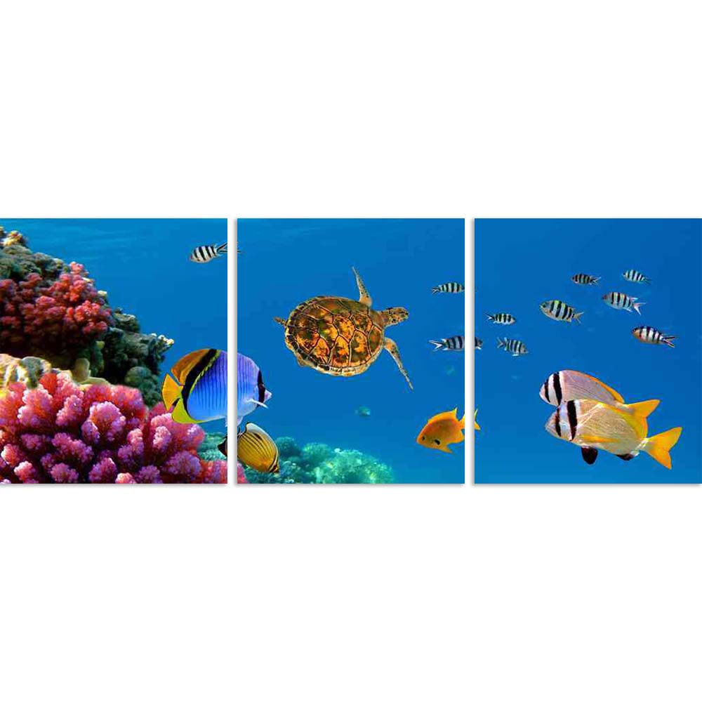 ArtzFolio Underwater Panorama with Turtle Coral Reef Split Art Painting Panel on Sunboard-Split Art Panels-AZ5005763SPL_FR_RF_R-0-Image Code 5005763 Vishnu Image Folio Pvt Ltd, IC 5005763, ArtzFolio, Split Art Panels, Animals, Photography, underwater, panorama, with, turtle, coral, reef, split, art, painting, panel, on, sunboard, framed, canvas, print, wall, for, living, room, frame, poster, pitaara, box, large, size, drawing, big, office, reception, of, kids, designer, decorative, amazonbasics, reprint, sm