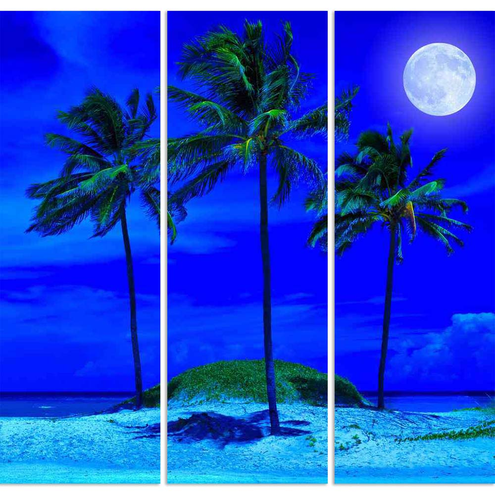 ArtzFolio Tropical Beach At Night With A Bright Full Moon Split Art Painting Panel on Sunboard-Split Art Panels-AZ5005772SPL_FR_RF_R-0-Image Code 5005772 Vishnu Image Folio Pvt Ltd, IC 5005772, ArtzFolio, Split Art Panels, Landscapes, Photography, tropical, beach, at, night, with, a, bright, full, moon, split, art, painting, panel, on, sunboard, framed, canvas, print, wall, for, living, room, frame, poster, pitaara, box, large, size, drawing, big, office, reception, of, kids, designer, decorative, amazonbas