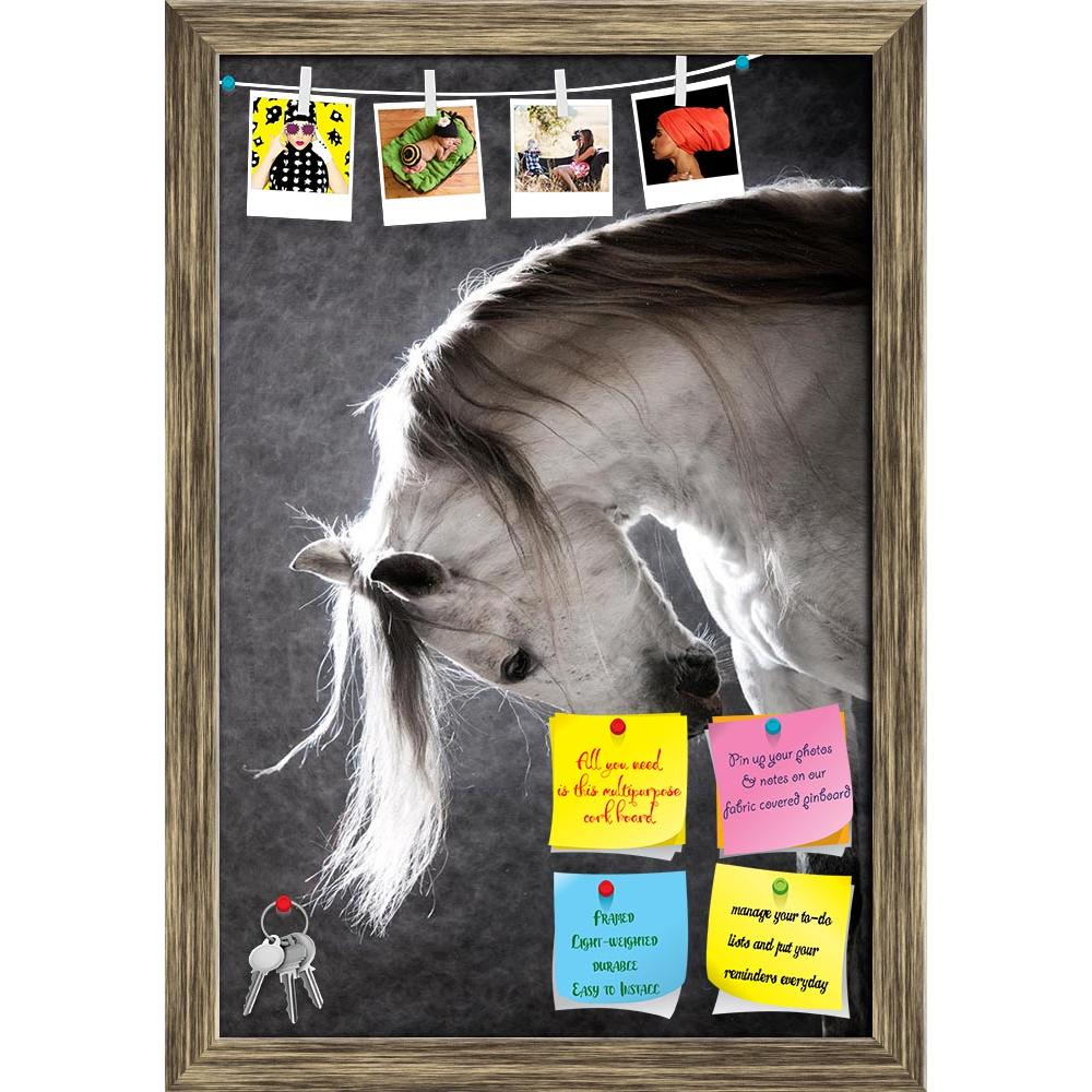 ArtzFolio White Andalusian Horse on a Dark Background Printed Bulletin Board Notice Pin Board Soft Board | Framed-Bulletin Boards Framed-AZ5005781BLB_FR_RF_R-0-Image Code 5005781 Vishnu Image Folio Pvt Ltd, IC 5005781, ArtzFolio, Bulletin Boards Framed, Animals, Photography, white, andalusian, horse, on, a, dark, background, printed, bulletin, board, notice, pin, soft, framed, animal, grey, beautiful, breed, equestrian, equine, face, mane, mare, portrait, spanish, stallion, studio, thoroughbred, vertical, m