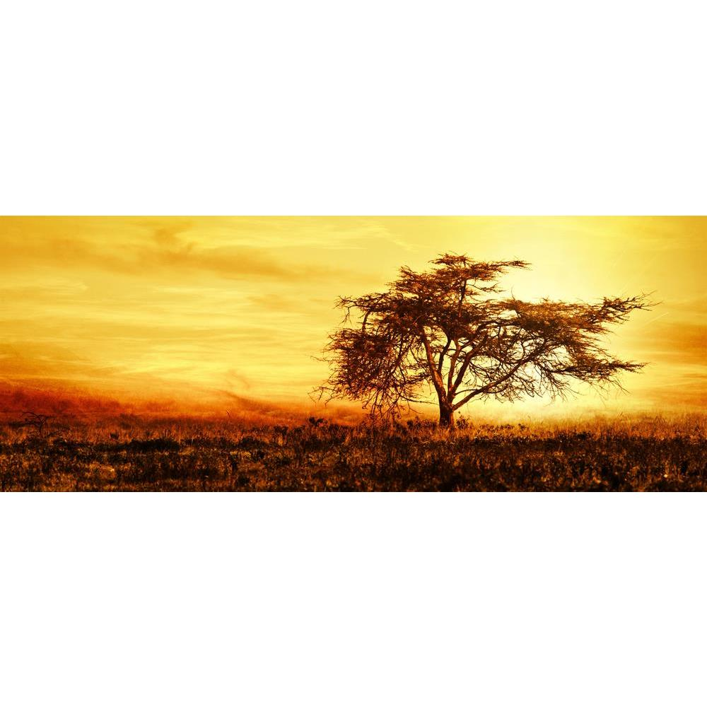 ArtzFolio African Tree Silhouette Over Sunset Peel & Stick Vinyl Wall Sticker-Laminated Wall Stickers-AZ5005806ART_UN_RF_R-0-Image Code 5005806 Vishnu Image Folio Pvt Ltd, IC 5005806, ArtzFolio, Laminated Wall Stickers, Landscapes, Photography, african, tree, silhouette, over, sunset, peel, stick, vinyl, wall, sticker, for, bedroom, large, size, decal, drawing, room, living, decorative, big, waterproof, home, office, reception, pitaara, box, designer, prints, kids, pvc, amazonbasics, washable, abstract, sel