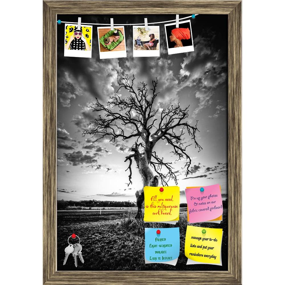 ArtzFolio Alone Dead Tree on Country Highway Printed Bulletin Board Notice Pin Board Soft Board | Framed-Bulletin Boards Framed-AZ5005873BLB_FR_RF_R-0-Image Code 5005873 Vishnu Image Folio Pvt Ltd, IC 5005873, ArtzFolio, Bulletin Boards Framed, Landscapes, Vintage, Photography, alone, dead, tree, on, country, highway, printed, bulletin, board, notice, pin, soft, framed, tall, wood, bark, grow, dry, big, sky, set, one, sun, old, stem, epic, fall, root, twigs, green, white, cloud, grass, black, bough, plant,