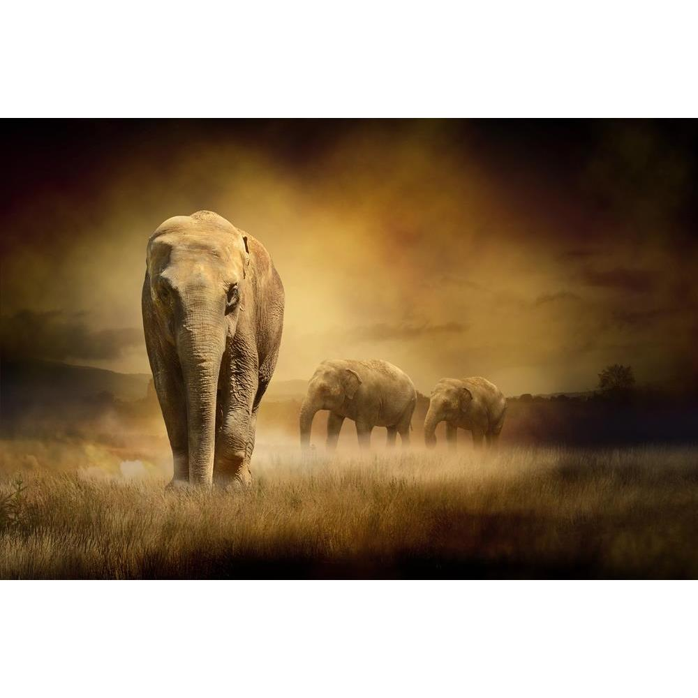 ArtzFolio Elephants At Sunset Peel & Stick Vinyl Wall Sticker-Laminated Wall Stickers-AZ5005894ART_UN_RF_R-0-Image Code 5005894 Vishnu Image Folio Pvt Ltd, IC 5005894, ArtzFolio, Laminated Wall Stickers, Animals, Photography, elephants, at, sunset, peel, stick, vinyl, wall, sticker, for, bedroom, large, size, decal, drawing, room, living, decorative, big, waterproof, home, office, reception, pitaara, box, designer, prints, kids, pvc, amazonbasics, washable, abstract, self, adhesive, imported, small, decals,