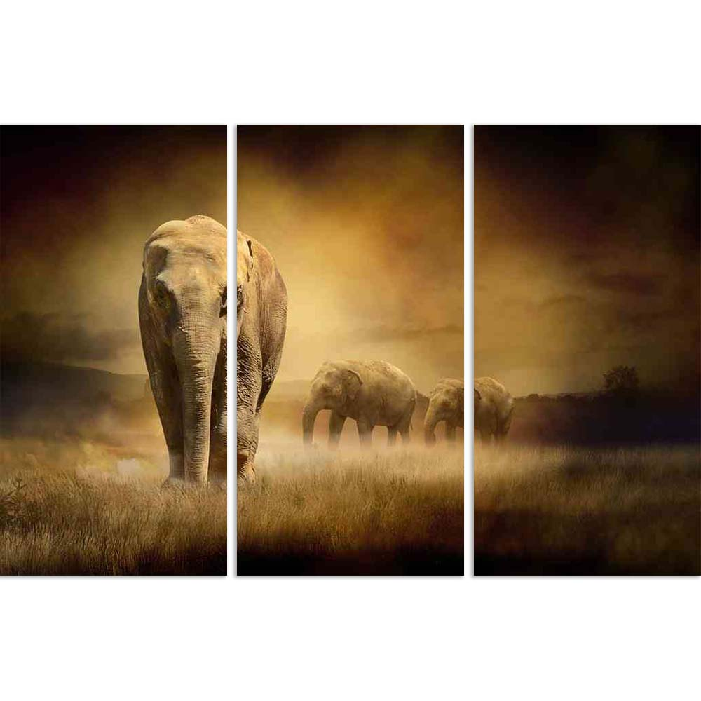 ArtzFolio Elephants At Sunset Split Art Painting Panel on Sunboard-Split Art Panels-AZ5005894SPL_FR_RF_R-0-Image Code 5005894 Vishnu Image Folio Pvt Ltd, IC 5005894, ArtzFolio, Split Art Panels, Animals, Photography, elephants, at, sunset, split, art, painting, panel, on, sunboard, framed, canvas, print, wall, for, living, room, with, frame, poster, pitaara, box, large, size, drawing, big, office, reception, of, kids, designer, decorative, amazonbasics, reprint, small, bedroom, scenery, africa, african, ani