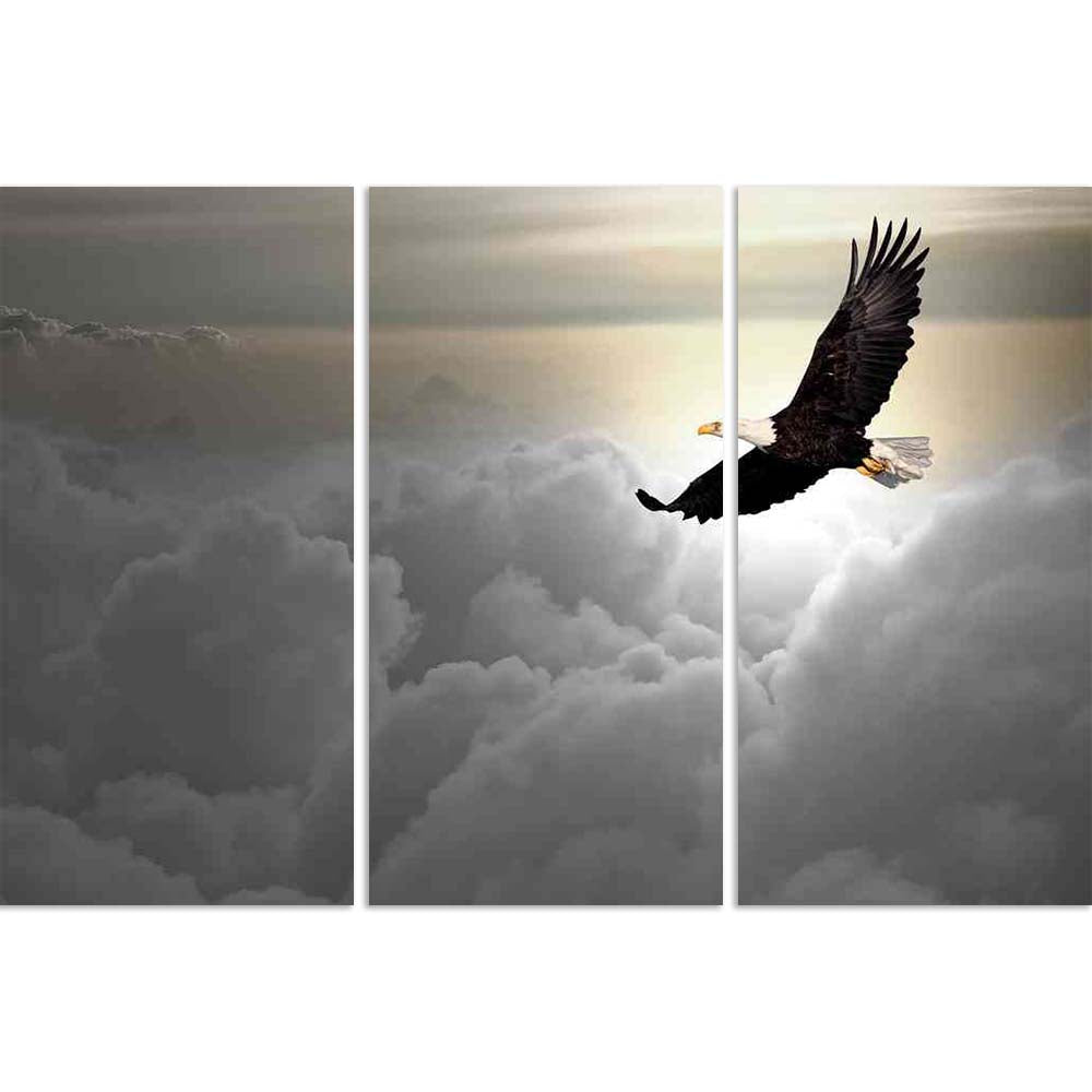 ArtzFolio Bald Eagle Flying Above The Clouds Split Art Painting Panel on Sunboard-Split Art Panels-AZ5005897SPL_FR_RF_R-0-Image Code 5005897 Vishnu Image Folio Pvt Ltd, IC 5005897, ArtzFolio, Split Art Panels, Birds, Photography, bald, eagle, flying, above, the, clouds, split, art, painting, panel, on, sunboard, framed, canvas, print, wall, for, living, room, with, frame, poster, pitaara, box, large, size, drawing, big, office, reception, of, kids, designer, decorative, amazonbasics, reprint, small, bedroom