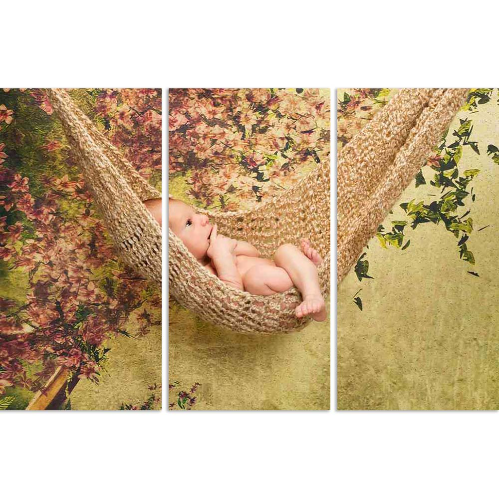 ArtzFolio Newborn Baby Boy Relaxes In A Hammock Split Art Painting Panel on Sunboard-Split Art Panels-AZ5005917SPL_FR_RF_R-0-Image Code 5005917 Vishnu Image Folio Pvt Ltd, IC 5005917, ArtzFolio, Split Art Panels, Kids, Photography, newborn, baby, boy, relaxes, in, a, hammock, split, art, painting, panel, on, sunboard, framed, canvas, print, wall, for, living, room, with, frame, poster, pitaara, box, large, size, drawing, big, office, reception, of, designer, decorative, amazonbasics, reprint, small, bedroom