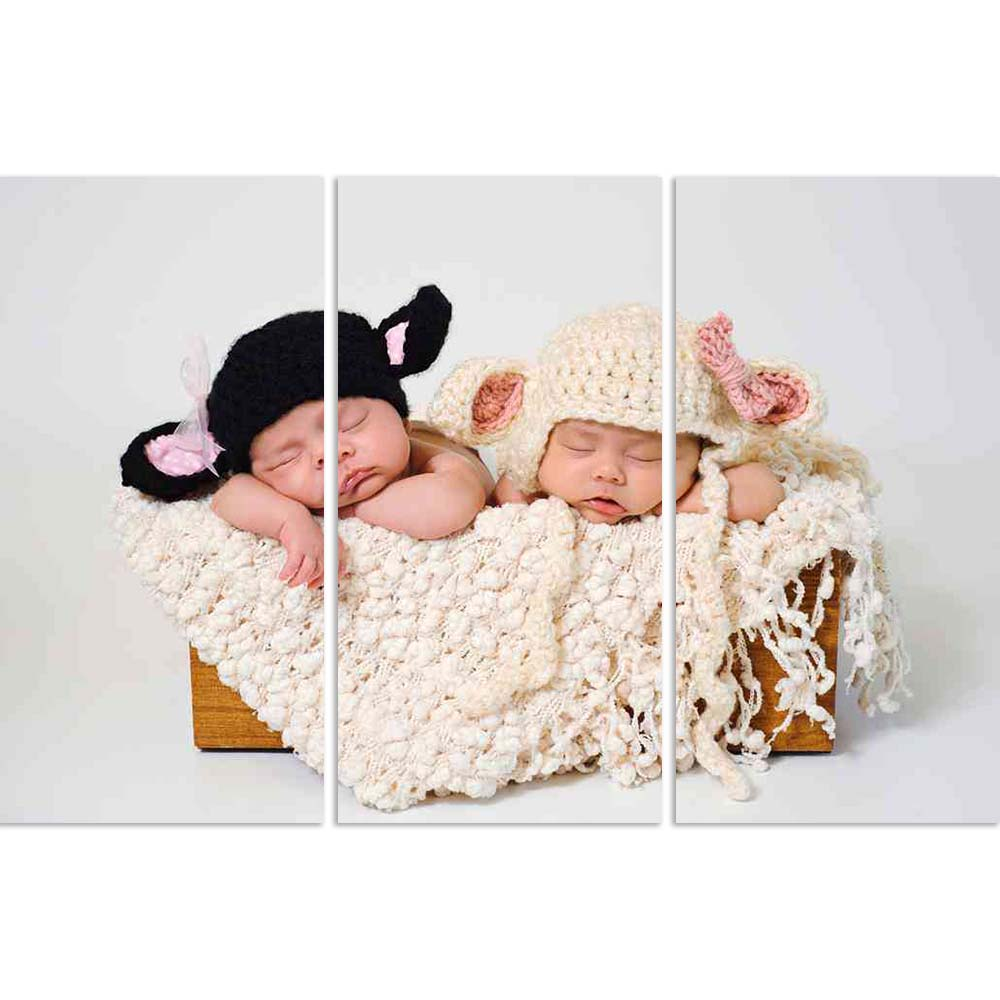 ArtzFolio Sleeping Fraternal Twin Newborn Baby Girls D2 Split Art Painting Panel on Sunboard-Split Art Panels-AZ5005939SPL_FR_RF_R-0-Image Code 5005939 Vishnu Image Folio Pvt Ltd, IC 5005939, ArtzFolio, Split Art Panels, Kids, Photography, sleeping, fraternal, twin, newborn, baby, girls, d2, split, art, painting, panel, on, sunboard, framed, canvas, print, wall, for, living, room, with, frame, poster, pitaara, box, large, size, drawing, big, office, reception, of, designer, decorative, amazonbasics, reprint