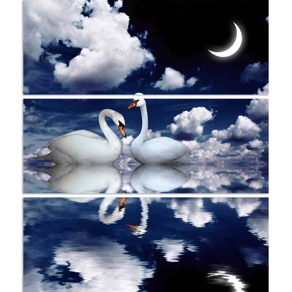 ArtzFolio Image of Two White Swans D1 Split Art Painting Panel on Sunboard-Split Art Panels-AZ5006062SPL_FR_RF_R-0-Image Code 5006062 Vishnu Image Folio Pvt Ltd, IC 5006062, ArtzFolio, Split Art Panels, Birds, Photography, image, of, two, white, swans, d1, split, art, painting, panel, on, sunboard, framed, canvas, print, wall, for, living, room, with, frame, poster, pitaara, box, large, size, drawing, big, office, reception, kids, designer, decorative, amazonbasics, reprint, small, bedroom, scenery, swan, b