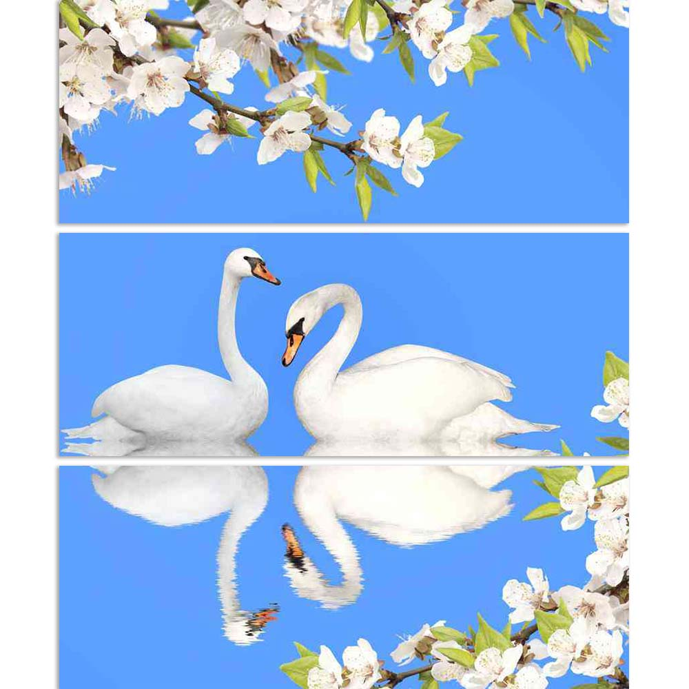 ArtzFolio Image of Two White Swans D2 Split Art Painting Panel on Sunboard-Split Art Panels-AZ5006075SPL_FR_RF_R-0-Image Code 5006075 Vishnu Image Folio Pvt Ltd, IC 5006075, ArtzFolio, Split Art Panels, Birds, Floral, Kids, Photography, image, of, two, white, swans, d2, split, art, painting, panel, on, sunboard, framed, canvas, print, wall, for, living, room, with, frame, poster, pitaara, box, large, size, drawing, big, office, reception, designer, decorative, amazonbasics, reprint, small, bedroom, scenery,