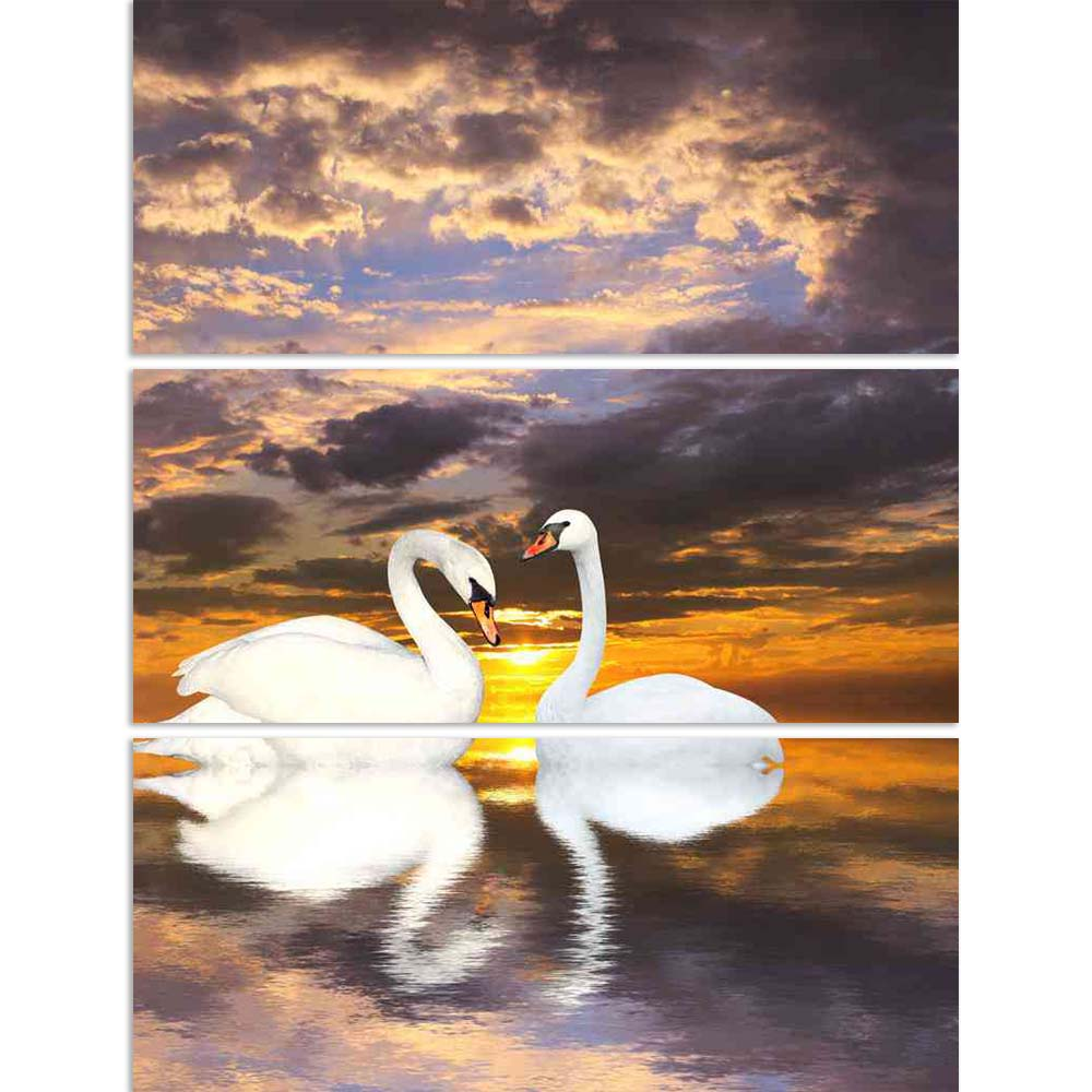 ArtzFolio Two White Swans D1 Split Art Painting Panel on Sunboard-Split Art Panels-AZ5006080SPL_FR_RF_R-0-Image Code 5006080 Vishnu Image Folio Pvt Ltd, IC 5006080, ArtzFolio, Split Art Panels, Birds, Photography, two, white, swans, d1, split, art, painting, panel, on, sunboard, framed, canvas, print, wall, for, living, room, with, frame, poster, pitaara, box, large, size, drawing, big, office, reception, of, kids, designer, decorative, amazonbasics, reprint, small, bedroom, scenery, swan, bird, pair, anima