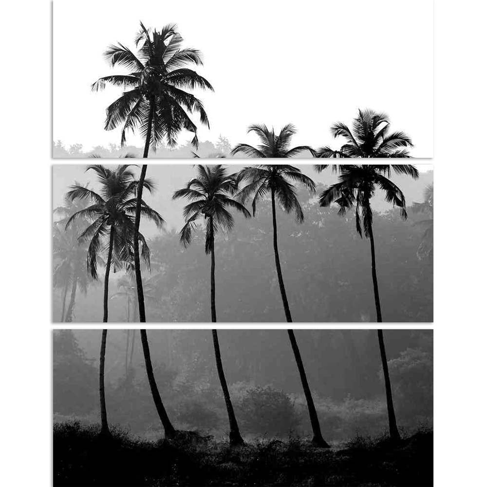 ArtzFolio Black White Photo Of Palm Trees Split Art Painting Panel on Sunboard-Split Art Panels-AZ5006086SPL_FR_RF_R-0-Image Code 5006086 Vishnu Image Folio Pvt Ltd, IC 5006086, ArtzFolio, Split Art Panels, Landscapes, Photography, black, white, photo, of, palm, trees, split, art, painting, panel, on, sunboard, framed, canvas, print, wall, for, living, room, with, frame, poster, pitaara, box, large, size, drawing, big, office, reception, kids, designer, decorative, amazonbasics, reprint, small, bedroom, sce