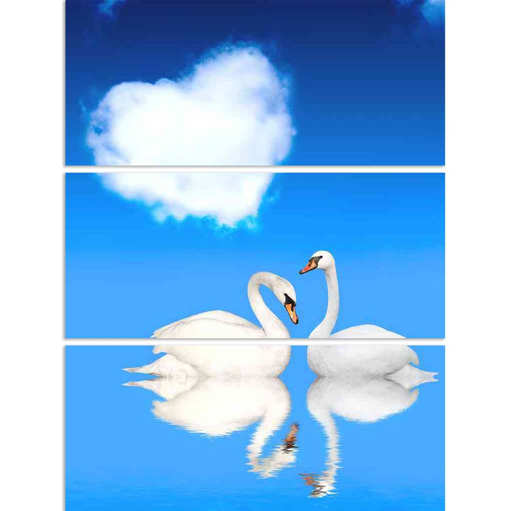 ArtzFolio Two White Swans D2 Split Art Painting Panel on Sunboard-Split Art Panels-AZ5006140SPL_FR_RF_R-0-Image Code 5006140 Vishnu Image Folio Pvt Ltd, IC 5006140, ArtzFolio, Split Art Panels, Birds, Photography, two, white, swans, d2, split, art, painting, panel, on, sunboard, framed, canvas, print, wall, for, living, room, with, frame, poster, pitaara, box, large, size, drawing, big, office, reception, of, kids, designer, decorative, amazonbasics, reprint, small, bedroom, scenery, heart, swan, bird, pair
