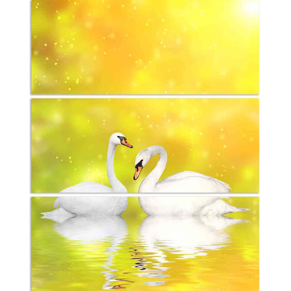 ArtzFolio Two White Swans D3 Split Art Painting Panel on Sunboard-Split Art Panels-AZ5006148SPL_FR_RF_R-0-Image Code 5006148 Vishnu Image Folio Pvt Ltd, IC 5006148, ArtzFolio, Split Art Panels, Birds, Photography, two, white, swans, d3, split, art, painting, panel, on, sunboard, framed, canvas, print, wall, for, living, room, with, frame, poster, pitaara, box, large, size, drawing, big, office, reception, of, kids, designer, decorative, amazonbasics, reprint, small, bedroom, scenery, swan, bird, pair, anima