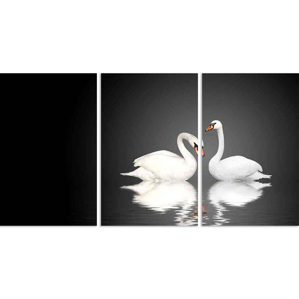ArtzFolio Two White Swans D4 Split Art Painting Panel on Sunboard-Split Art Panels-AZ5006160SPL_FR_RF_R-0-Image Code 5006160 Vishnu Image Folio Pvt Ltd, IC 5006160, ArtzFolio, Split Art Panels, Birds, Photography, two, white, swans, d4, split, art, painting, panel, on, sunboard, framed, canvas, print, wall, for, living, room, with, frame, poster, pitaara, box, large, size, drawing, big, office, reception, of, kids, designer, decorative, amazonbasics, reprint, small, bedroom, scenery, swan, bird, pair, anima