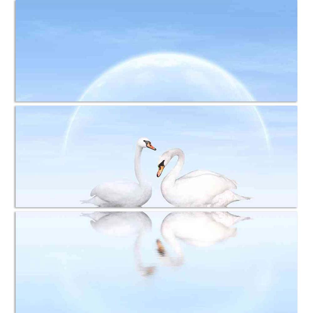 ArtzFolio Two White Swans D5 Split Art Painting Panel on Sunboard-Split Art Panels-AZ5006187SPL_FR_RF_R-0-Image Code 5006187 Vishnu Image Folio Pvt Ltd, IC 5006187, ArtzFolio, Split Art Panels, Birds, Photography, two, white, swans, d5, split, art, painting, panel, on, sunboard, framed, canvas, print, wall, for, living, room, with, frame, poster, pitaara, box, large, size, drawing, big, office, reception, of, kids, designer, decorative, amazonbasics, reprint, small, bedroom, scenery, swan, bird, pair, anima