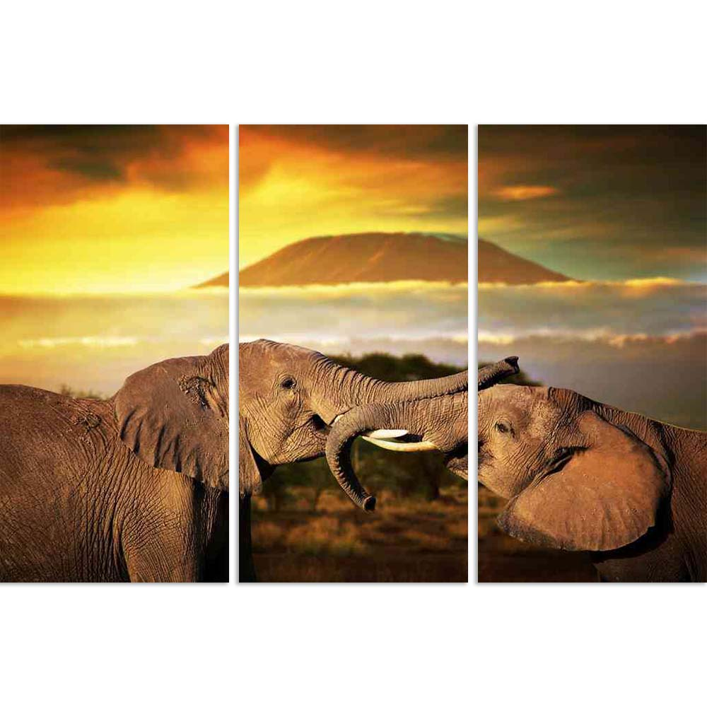 ArtzFolio Elephants Playing With Their Trunks On Mount Kilimanjaro Split Art Painting Panel on Sunboard-Split Art Panels-AZ5006266SPL_FR_RF_R-0-Image Code 5006266 Vishnu Image Folio Pvt Ltd, IC 5006266, ArtzFolio, Split Art Panels, Animals, Photography, elephants, playing, with, their, trunks, on, mount, kilimanjaro, split, art, painting, panel, sunboard, framed, canvas, print, wall, for, living, room, frame, poster, pitaara, box, large, size, drawing, big, office, reception, of, kids, designer, decorative,