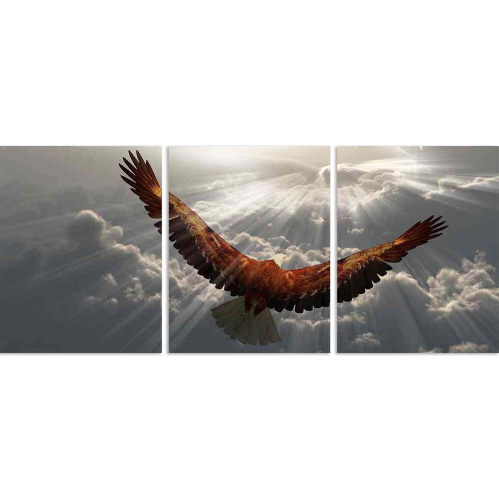 ArtzFolio Eagle In Flight Above Tyhe Clouds D2 Split Art Painting Panel on Sunboard-Split Art Panels-AZ5006333SPL_FR_RF_R-0-Image Code 5006333 Vishnu Image Folio Pvt Ltd, IC 5006333, ArtzFolio, Split Art Panels, Birds, Photography, eagle, in, flight, above, tyhe, clouds, d2, split, art, painting, panel, on, sunboard, framed, canvas, print, wall, for, living, room, with, frame, poster, pitaara, box, large, size, drawing, big, office, reception, of, kids, designer, decorative, amazonbasics, reprint, small, be