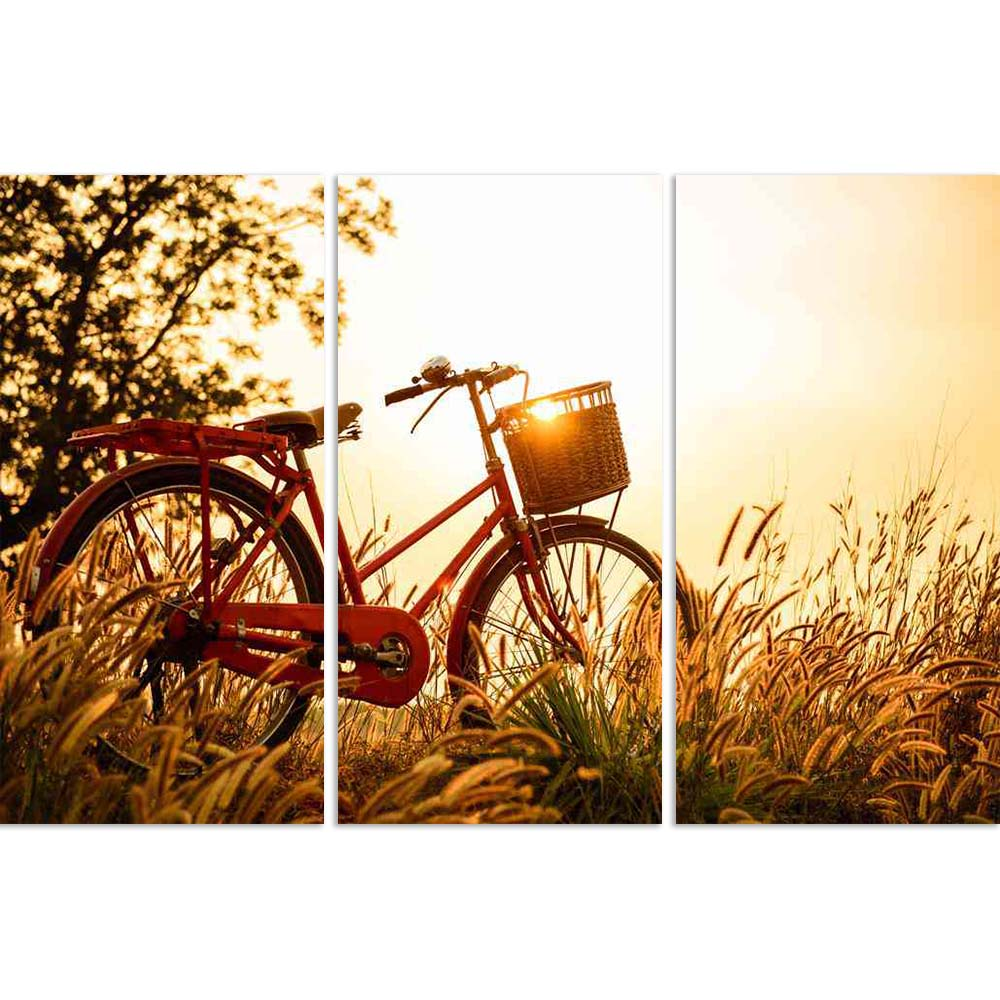 ArtzFolio Beautiful Landscape Image With Bicycle At Sunset Split Art Painting Panel on Sunboard-Split Art Panels-AZ5006407SPL_FR_RF_R-0-Image Code 5006407 Vishnu Image Folio Pvt Ltd, IC 5006407, ArtzFolio, Split Art Panels, Landscapes, Photography, beautiful, landscape, image, with, bicycle, at, sunset, split, art, painting, panel, on, sunboard, framed, canvas, print, wall, for, living, room, frame, poster, pitaara, box, large, size, drawing, big, office, reception, of, kids, designer, decorative, amazonbas