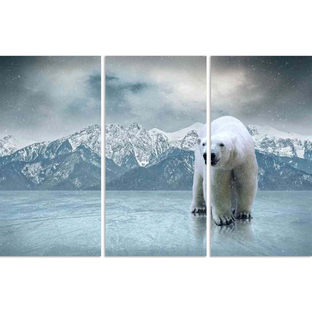 ArtzFolio White Polar Bear On The Ice Split Art Painting Panel on Sunboard-Split Art Panels-AZ5006604SPL_FR_RF_R-0-Image Code 5006604 Vishnu Image Folio Pvt Ltd, IC 5006604, ArtzFolio, Split Art Panels, Animals, Photography, white, polar, bear, on, the, ice, split, art, painting, panel, sunboard, framed, canvas, print, wall, for, living, room, with, frame, poster, pitaara, box, large, size, drawing, big, office, reception, of, kids, designer, decorative, amazonbasics, reprint, small, bedroom, scenery, anima