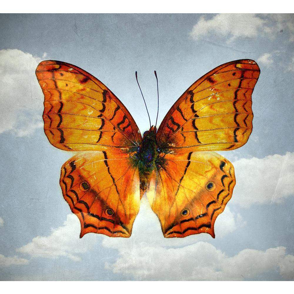 ArtzFolio Double Effect Butterfly Background Image D4 Unframed Premium Canvas Painting-Paintings Unframed Premium-AZ5006795ART_UN_RF_R-0-Image Code 5006795 Vishnu Image Folio Pvt Ltd, IC 5006795, ArtzFolio, Paintings Unframed Premium, Birds, Vintage, Digital Art, double, effect, butterfly, background, image, d4, unframed, premium, canvas, painting, large, size, print, wall, for, living, room, without, frame, decorative, poster, art, pitaara, box, drawing, photography, amazonbasics, big, kids, designer, offi