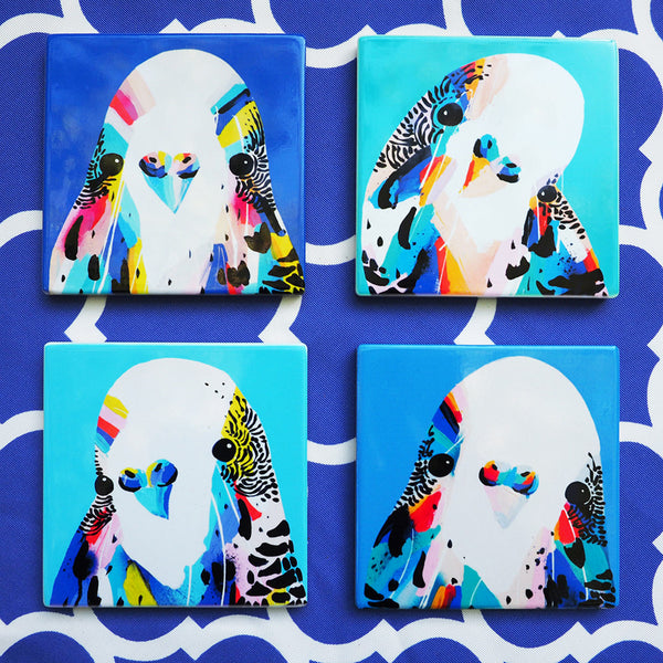 Coaster set- BUDGIES