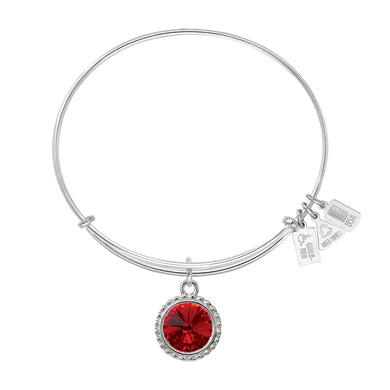Wind & Fire January Birthstone Charm Bangle