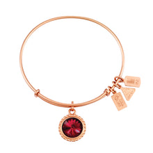 Load image into Gallery viewer, Wind & Fire January Birthstone Charm Bangle