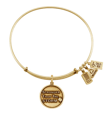 Wind & Fire Stronger Than the Storm Charm Bangle