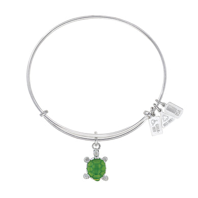 Wind & Fire Turtle Enameled Charm Bangle