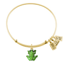 Load image into Gallery viewer, Wind & Fire Frog Enameled Charm Bangle