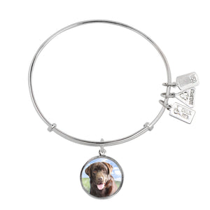 Wind & Fire Chocolate Lab Charm Bangle